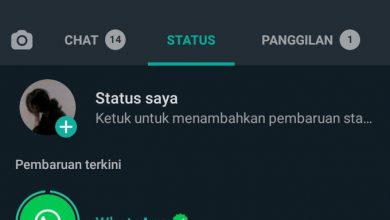 Photo of WhatsApp Tiba tiba Muncul di Status Pengguna