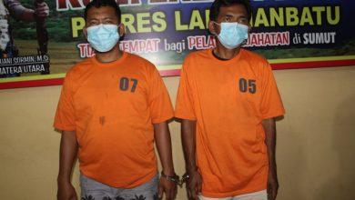 Photo of Polres Labuhanbatu Tangkap Kaki Tangan Gembong Narkoba Man Batak