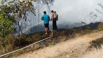 Photo of Kebakaran Lahan di Batahan Madina Belum Padam