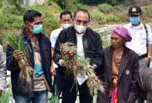 Photo of Edy Rahmayadi  Harapkan Food Estate Humbahas Sejahterakan Masyarakat