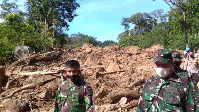 Photo of Walhi Sumut Minta Evaluasi Proyek PLTA Batang Toru dan Usut Tuntas Bencana Longsor