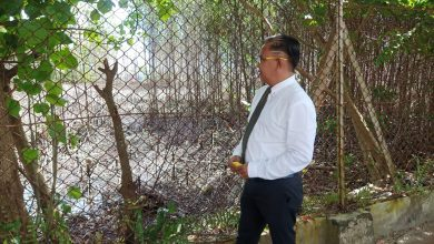 Photo of Waket DPRD Sibolga Minta PKPLH Teliti Pencemaran Mangrove di Sekitaran TBBM Pertamina