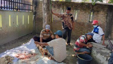 Photo of MAS Al Washliyah 12 Perbaungan Sembelih 4 Ekor Lembu Kurban