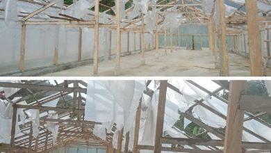 Photo of Baru Diresmikan, Green House Bantuan BI Senilai Rp879 Juta di Mandailing Natal Rusak